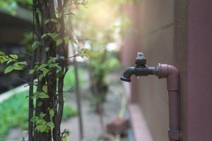 plumbing maitenance